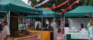 Market Costa Teguise